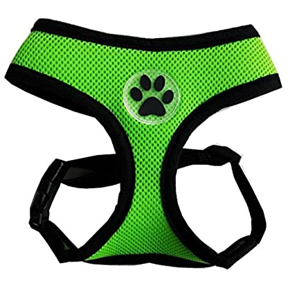 PUPTECK Soft Mesh Adjustable Pet Walking Harness for Dogs Green Extra Large 1