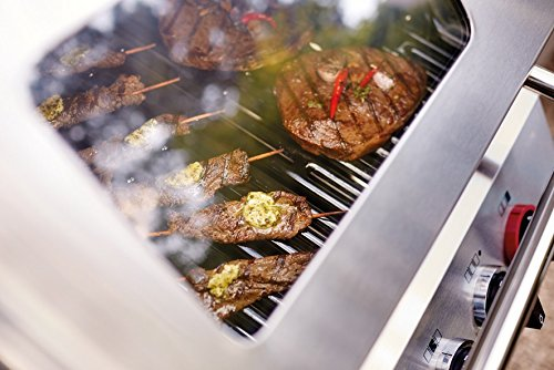 Enders Gasgrill Chicago 3 Erfahrungen : Test gasgrill enders monroe sik turbo gas grill im bundle mit