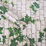 Wollzo Leafy Look Self Adhesive Wallpaper (45 x 500 cm, Multicolour) (A01BZ1001)