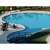 Piscina Color lafazit 750 ml verde Piscina Color revestimiento Pool Color Pool revestimiento pintura pescado Platillos pescado Estanque Color