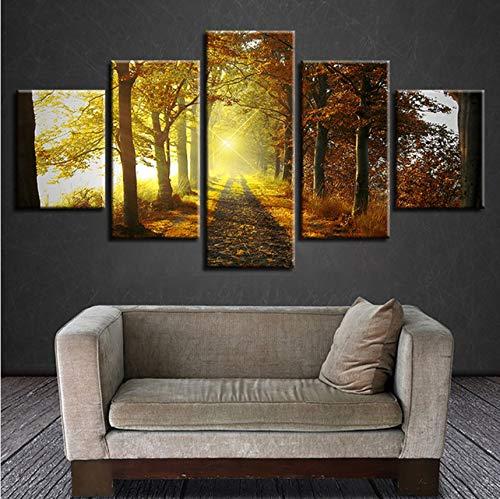 Lsfhb Leinwand Malerei Wandkunst Dekoration 5 Stück Wald Trail Sonnenschein Landschaft Poster Bilder Für Wohnzimmer Rahmen-250X175Cm