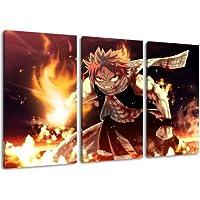 Foto Fairytail Natsu, 3-pedazo de la lona (Total Tamaño: 120x80 cm), la impresión del arte de alta calidad como un mural. Más barato que una pintura al óleo! ADVERTENCIA NO cartel!