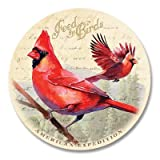 5 Piece Cardinal Postcard Stone Coaster Set by American Expedition
