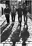 Arctic Monkeys: Shadows   UK Import, Poster [59 x 84 cm]