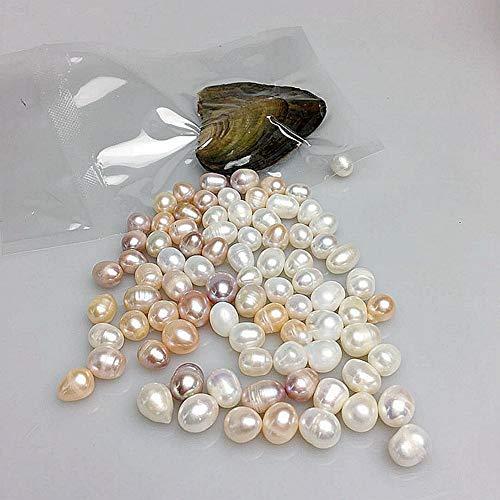 Obrid#e5on 6 Stück Austern mit Perlen Innen 8-9mm Tolles Geschenk für Kinder Schmuckherstellung Set Mehrfarbig (8 Brautjungfer Von Geschenke-satz)