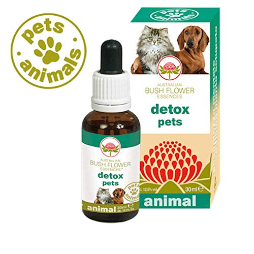 Australian Bush Flower Essences Detox Pets 30 ml - Universe Pets