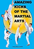 Amazing Kicks of the Martial Arts