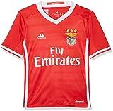 Adidas SLB H JSY Y Camiseta 1ª Equipación Benfica FC 2015/16, Niños, Rojo/Blanco, 15-16 años