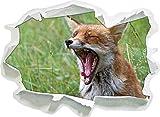 fox stanco su Wildwiese, carta 3D autoadesivo della parete formato: 92x67 cm decorazione della parete 3D Wall Stickers parete decalcomanie