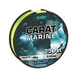 Angel Ficelle mer Ficelle Jaxon carat Marine Jaune Fluo/250m Bobine fil monofibre neuf (0,03€/m), 0,50mm / 40kg