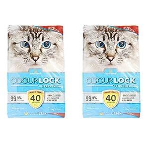 Intersand Odourlock Cat Litter (12 Kg) – Pack of 2