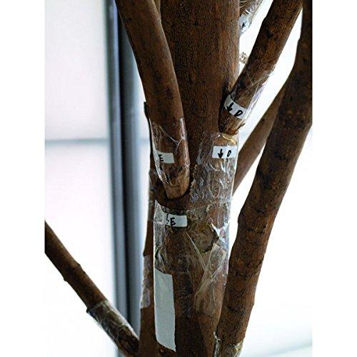 Deko Mammut-Olivenbaum mit 8960 Blättern und Oliven, 250 cm – Künstlicher Olivenbaum / Kunstbaum