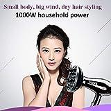Lorenlli Extrem leise elektrische Haartrockner-Einstellung der Leistung-1000W faltbare Reise-Salon-Gebrauch-Haartrockner-Fön-Schlag-Trockner