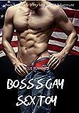 Boss's Gay Sex Toy: Boss Secretary Dirty MM BDSM Adventure (English Edition)