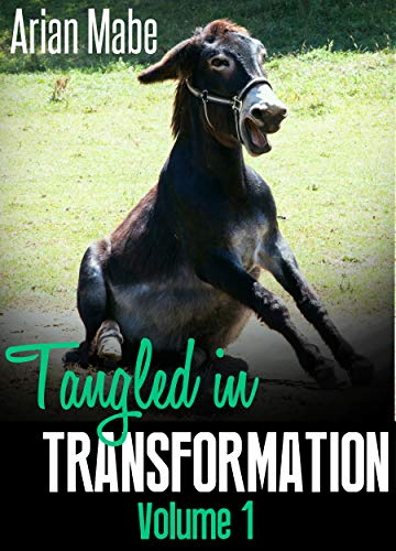 Tangled in Transformation: Volume 1 (English Edition)