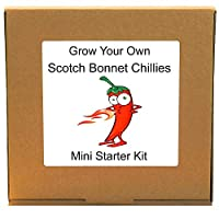 Grow Your Own Scotch Bonnet Hot Chillies Plant Kit - Unusual, Unique and Quirky Complete Beginner Friendly Indoor Chilli Gardening Gift for Men, Women or Children