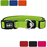 [Gesponsert]DDOXX Hundehalsband aus Air Mesh | für große, mittelgroße, mittlere & kleine Hunde | verschiedene Farben & Größen | Hunde-Halsband | Katzenhalsband | Halsung | Grün, XS - 1,5 x 21-30 cm
