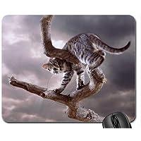 Nizza gatto mouse pad, Mousepad (Gatti Mouse Pad) #029 - Nizza Mouse Pad