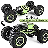 N & B NYUBI® RC Cars Double Sided Flip RC Car 2-Sided Stunt Vehicle Off-Road Vehicle 2.4Ghz 4WD High Speed 1:10 Racing Cars Transform Monster Trucks Rock Crawler Buggy Hobby Car (Color May Very)
