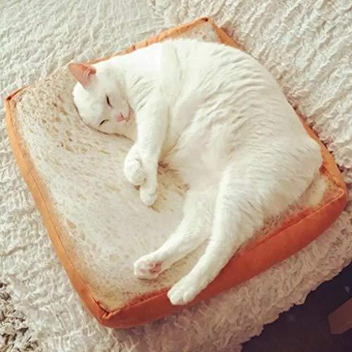 Farmerly Toast Cushion for Cat Small Dogs Pet Mat Mattress Pad Relaxing House &Pillow -