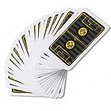 Skatspiel / Skatkarten / Kartenspiel Borussia Dortmund BVB 09 + gratis Sticker