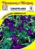 Thompson & Morgan AGK04415 Ziertabak Perfume Deep Purple F1 Hybride (Ziertabaksamen)