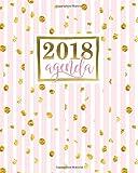 Agenda: 2018 Agenda semainier : 19x23cm : Bandes roses avec points dorés