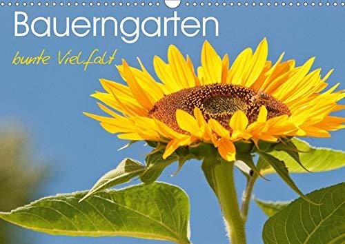Bauerngarten - bunte Vielfalt (Wandkalender 2020 DIN A3 quer): Wunderschöne Detailaufnahmen eines ökologischen Gartens (Monatskalender, 14 Seiten ) (CALVENDO Natur) - Lavendel Kürbis