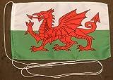 Buddel-Bini Wales 15x25 cm Tischflagge in Profi - Qualität Tischfahne Autoflagge Bootsflagge Motorradflagge Mopedflagge