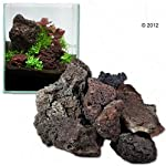 Lava Rock Unique Dark Lightweight with Different Shades and Shapes, Creates Amazing Aquascapes (80 cm Set: 11 natural… 5