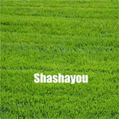 Bloom Green Co. 200 Pcs GAZONS Bonsai Golf de catégorie spéciale Evergreen Lawn Bonsai Terrains de soccer Villa haute Fleurs Etat Bonsai Jardin des plantes: 6