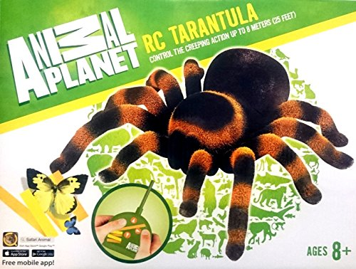 XXXL RC Spinne Tarantel ferngesteuerte Riesenspinne 25cm