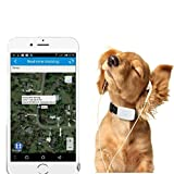tkstar mini GPS Tracker impermeabile cane, GPS, GPS Tracker cane gatto animale domestico Real Time Tracking & Activity Monitor Tracker online APP (gratuita per Android e iOS) tk911