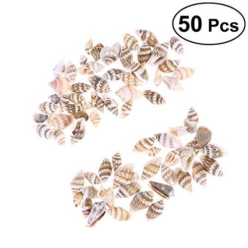 vorcool 50Natur Seashell Decor klein Conch Home Decoratio Crafts Fisch Tank Dekoration (Seashell Handwerk Projekte)