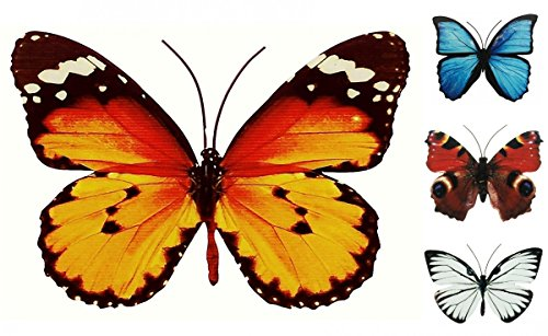 Schmetterling Metall Wand Deko Bunt Garten Wandschmuck Falter Schmetterlinge, Farbe:Orange, Größe:30 cm