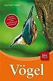 Vögel: Unsere heimischen Arten erkennen und bestimmen - Walther Thiede