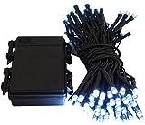 Led Lichterkette Batterie 24 48 96 mit Timer und teilweise mit Fernbedienung grünes Kabel für innen und außen (96er kaltweiß)