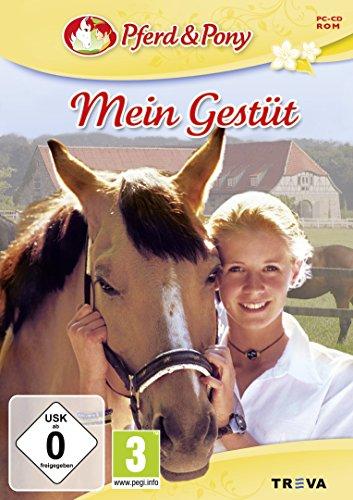 Pferd und Pony: Mein Gestüt (Pocket-buch Mein)
