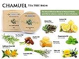 TEA TREE OIL BALM von Chamuel -100 % natürlich . Stop- Reizung , Juckreiz und Beruhigen Sie Ihre Haut ! Extrem vielseitig ! Alle Vorteile von Teebaumöl und vieles mehr! Die wirkungsvollste Salbe , die dramatisch Entzündung reduzieren und wohltuende Linderung für trockene, juckende oder gereizte Haut. Groß für Hautausschläge , Schrammen , rissige Lippen , Rasurbrand , Flecken , raue Nagelhaut und juckende Insektenstiche . Geld-Zurück-Garantie!