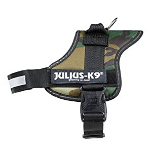 Julius-K9, 162M-BB1, Powerharness 16