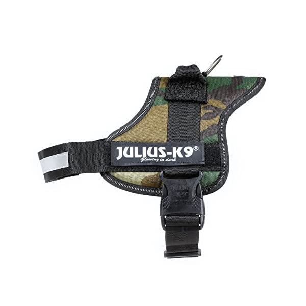 Julius-K9, 162M-BB1, Powerharness 1