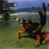 The Fat Of The Land [VINYL]
