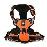 Louvra Arnés del Perro Antitirones Básicos Adjustable de Nylon, 3M Reflectante para Las Actividades al Aire Libre, Color Naranja, Tamaño XL (77-103CM)