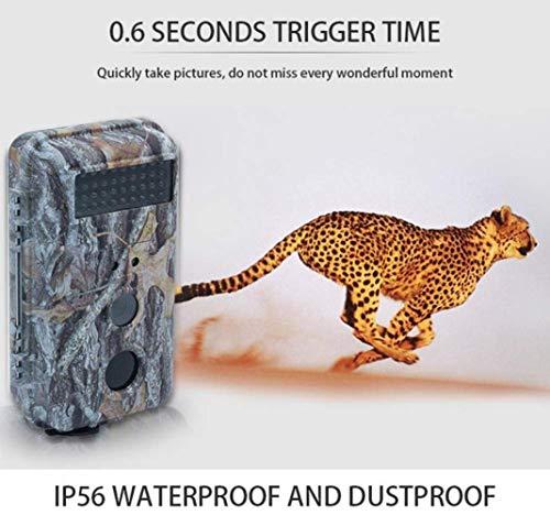 Trail Kamera 16MP 1080P Infrarot-Nachtsicht-Bewegung Aktivierte Wild Hunting Game Cam 120 ° Reichweite 0,5s Auslösergeschwindigkeit IP56 Wasserdicht für Home Security Surveillance ()