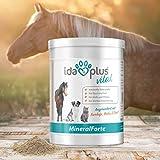 AniPlus – Kieselgur forte 400 g für Hunde unterstützt die Fell- und Hautbeschaffenheit mit wertvollem Silizium (100% biologisch) - 6