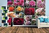 Premium Foto-Tapete Rosen Collage (verschiedene Größen) (Size L | 372 x 248 cm) Design-Tapete, Vlies-Tapete, Wand-Tapete, Wand-Dekoration, Photo-Tapete, Markenqualität von ERFURT