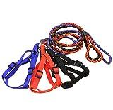 Da.Wa 1 x Hundegeschirr Halsbänder mit Leine für Teddy/Chihuahua/Zwergpinscher,120cm,Nylon,Zufall Farbe,M