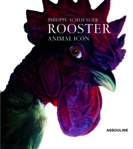 Roosters par Philippe Schlienger