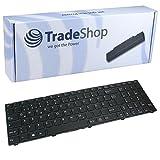 Trade-Shop Laptop-Tastatur / Notebook Keyboard Ersatz Austausch Deutsch QWERTZ für Medion Akoya E6239T E6647 E7226 E7226T E7227 E7227T E7228 E7228T E7415 E7415T E7416 E7419 E7631 (Deutsches Tastaturlayout)