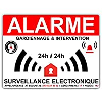 Stickers Alarme Maison-Surveillance electronique- 8 x 6 cm
